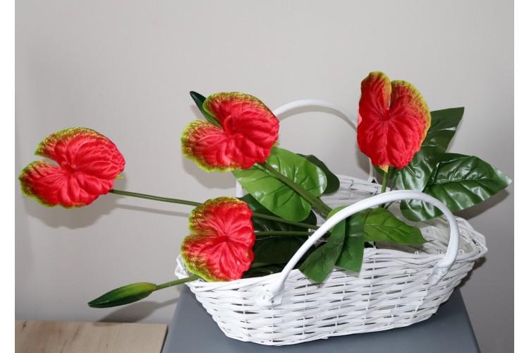 Anturium bukiet czerwony 58 cm